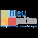 Logo - Bleu Patine